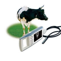 Handheld Ultrasound Machine YSB5100V