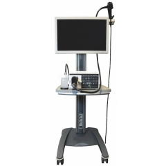 3.3m Trolley Video Endoscopy System for Equine YSNJ-330VET-M